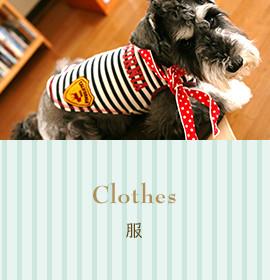 Clothes 服